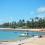 Tudo que você precisa saber sobre a Praia do Forte