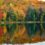 Outono: como saber se as árvores já estão coloridas no Canadá